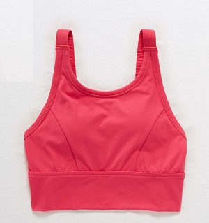 Aerie-Limited-Edition-Sports-Bra