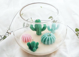 Cactus Soy Candles in Terrarium - top gifts for women